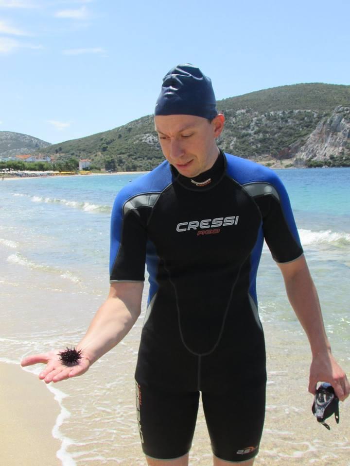 морски таралеж в Гърция