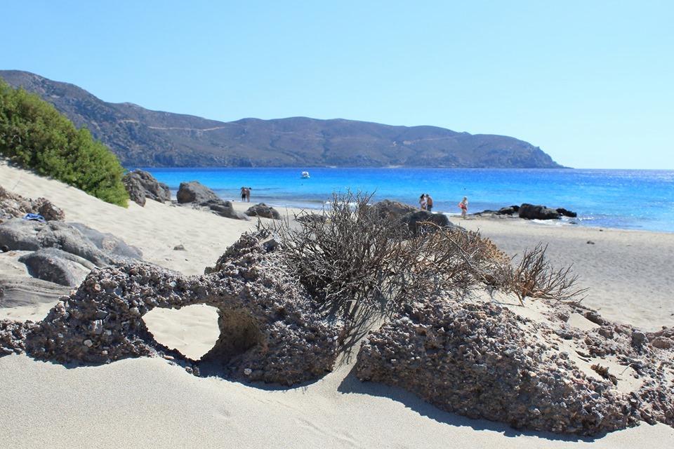 плаж Кедродасос