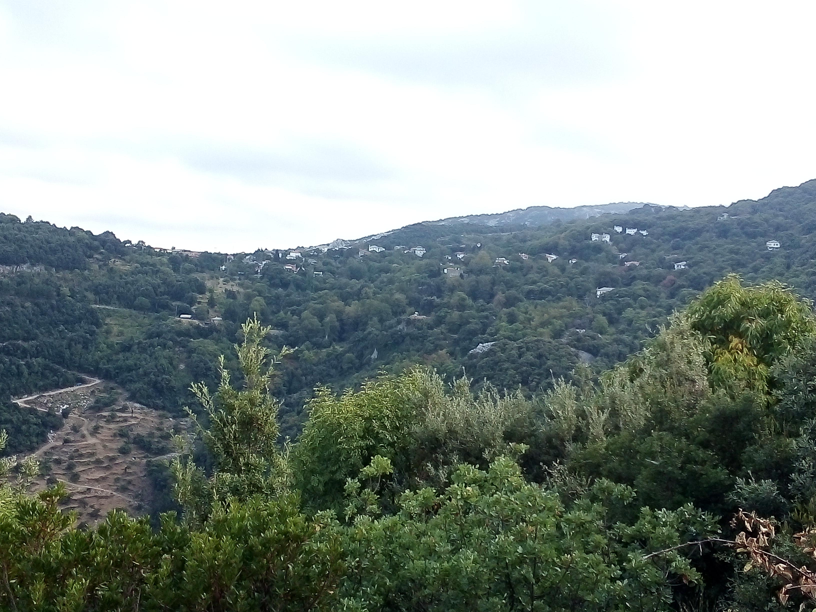 Село Цагарада е обвито в зеленина