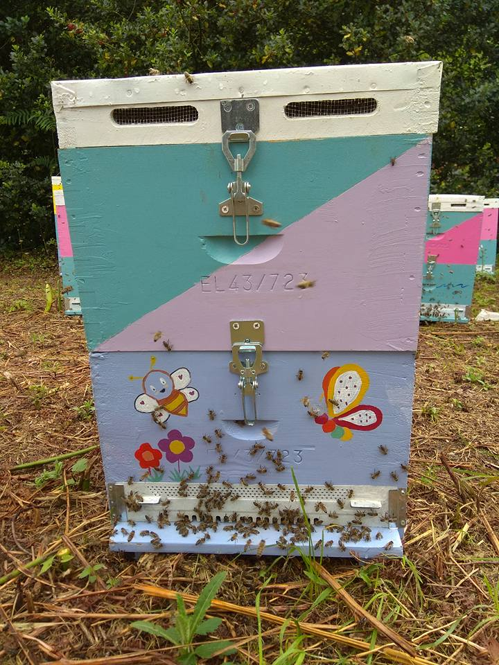 Щастливи пчели