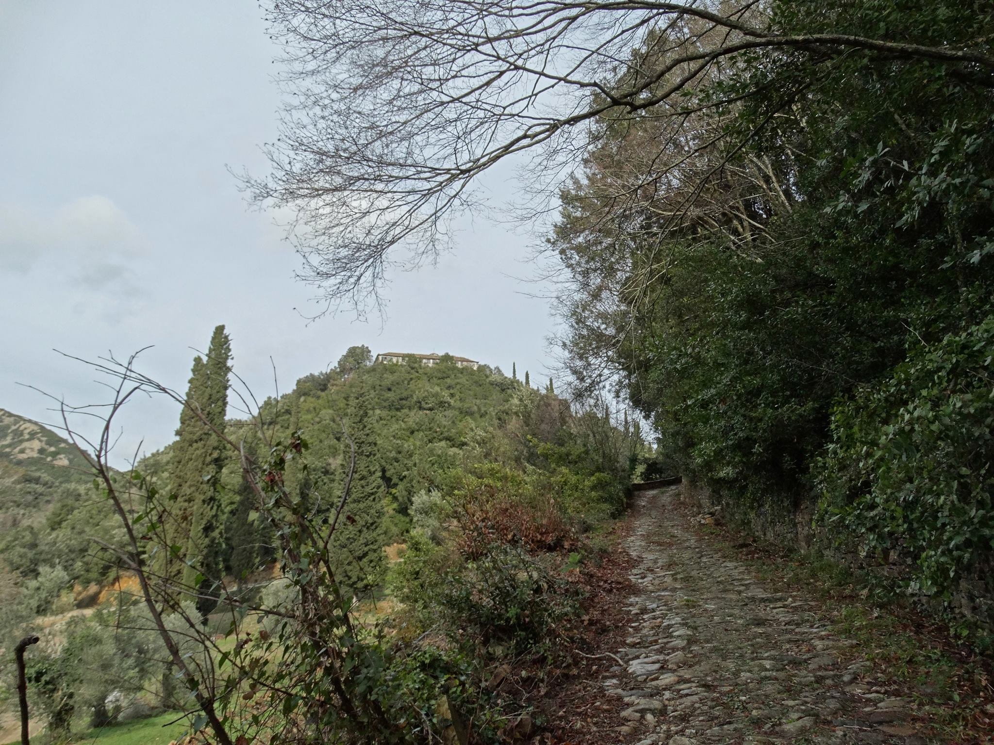 пътят към манастира на Атон