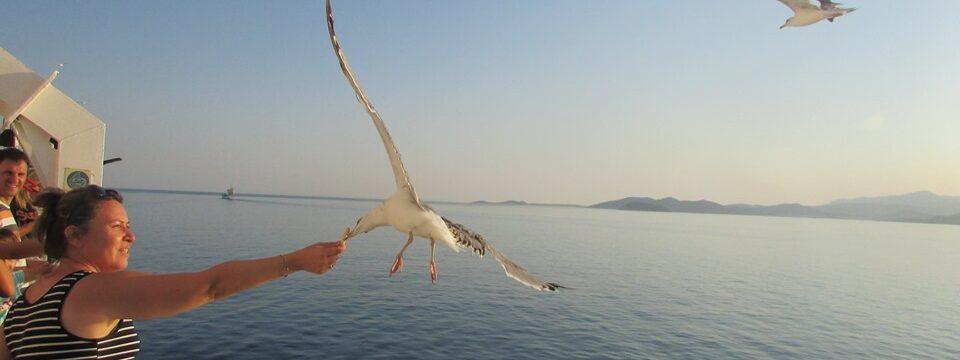 пътуване с ферибот в Гърция