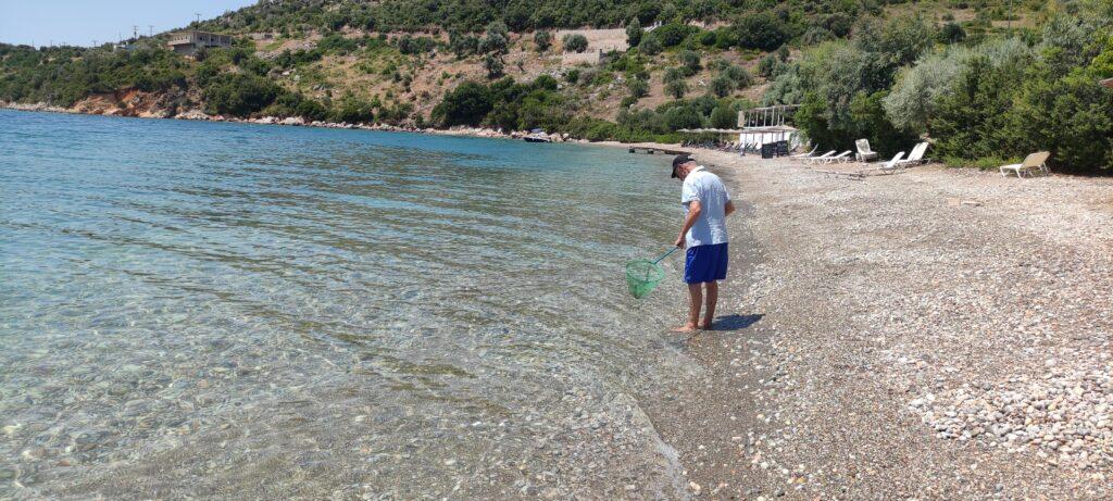 На лов за медузи